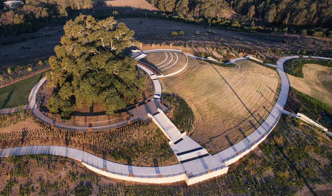 Emerald Hills Fig Tree Park