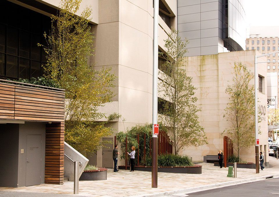 The Ark, Sydney - Place Design Group