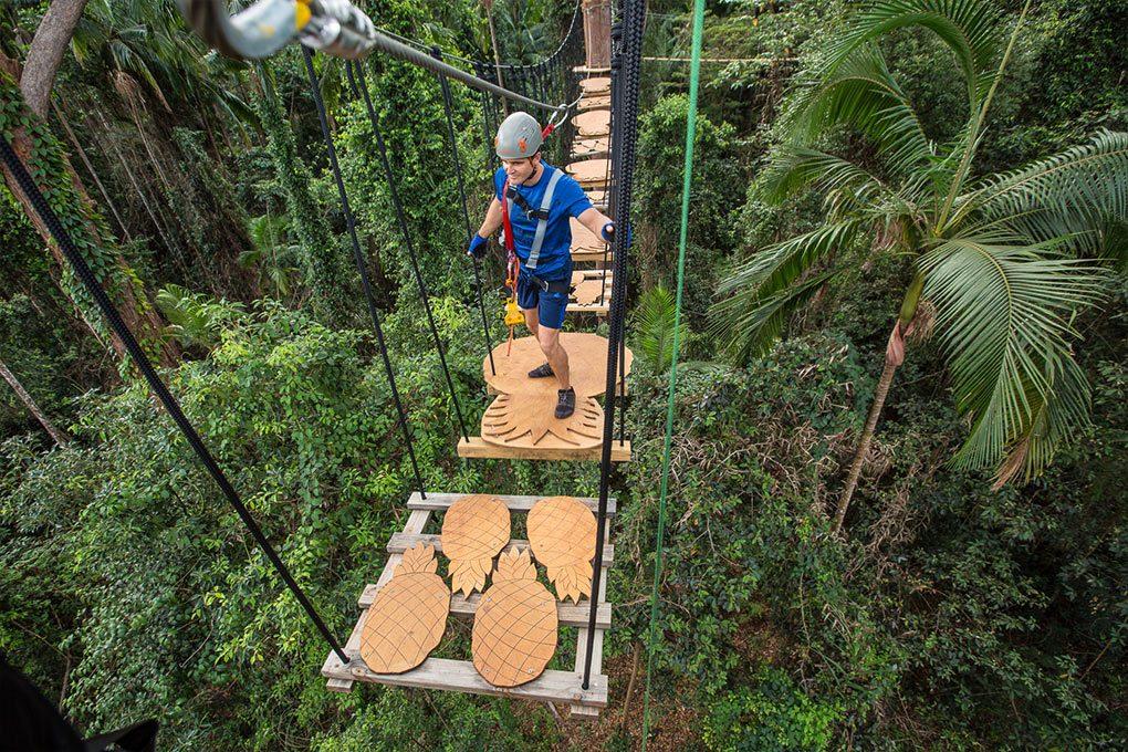 TreeTop Challenge